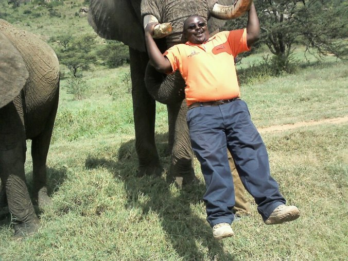 Being carried by an elephant